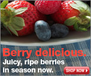 berries thumbnail web banner
